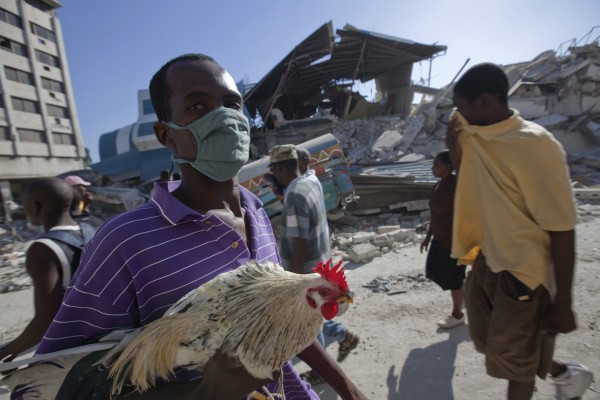 Recalling Haiti: our animal welfare response
