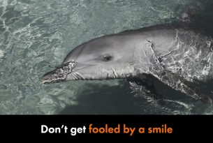 Don't get fooled by a smile