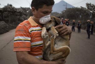 A resident cradles his dog after rescuing him near the Volcano of Fire in Escuintla, Guatemala