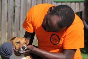 Personal de World Animal Protection atiende perro en Kenia