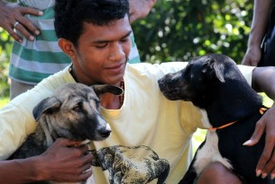 A man with his two recently vaccinated dogs in Flores, Indonesia