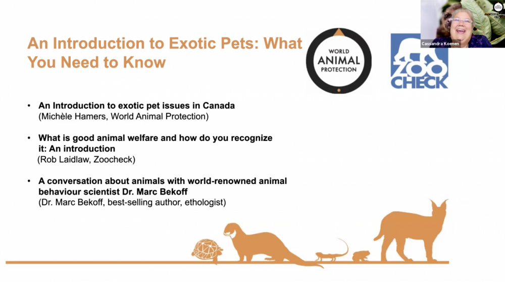 exotic_pet_webinar_series_2020_cass