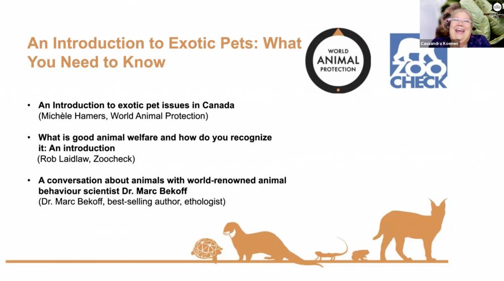 exotic_pet_webinar_series_2020_cass