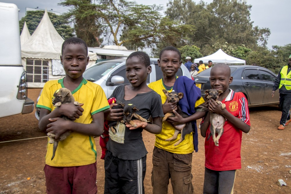 A group of boys clutch their puppies in line for rabies vaccinations