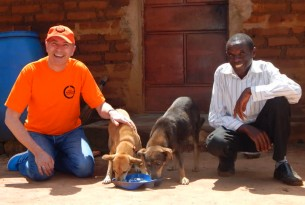 Our CEO Steve McIvor with dogs in Kenya - World Animal Protection - Better lives for dogs