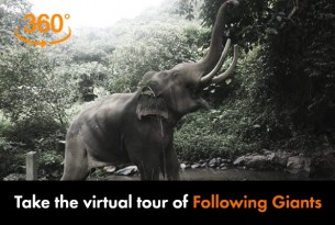 Take the 360 virtual tour of Following Giants