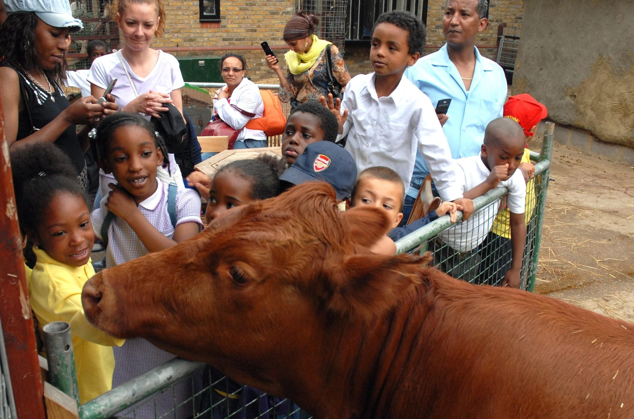 Animal education links