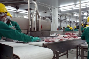 Workers at a meat processing plant