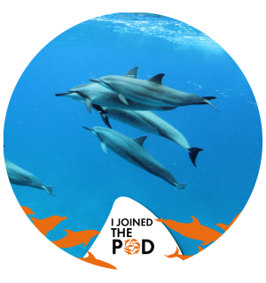 Join The Pod wild dolphins Instagram profile frame - World Animal Protection