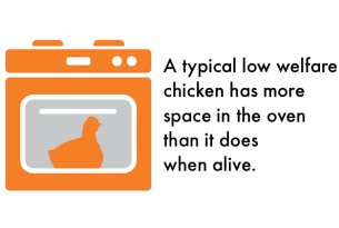 A typical low welfare chicken has more space in the oven than it does when alive.