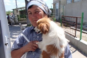 Dog is brought to our mobile clinic in Pestera, Romania
