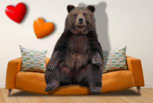An illustration of a bear sitting on a sofa