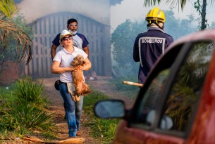 Latest on the Amazon fires