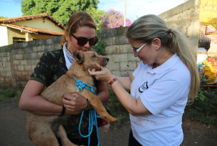 "Our Veterinary Programe Manager, Rosangela Ribeiro, with the rescued dog ""Laminha"""
