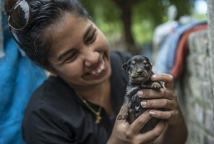 In April 2017, following heavy rains, many parts of Peru were affected by floods and landslides. Photo: World Animal Protection / Ernesto Benavides / AFP