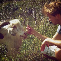 Jonty Whittleton with a Greek goat