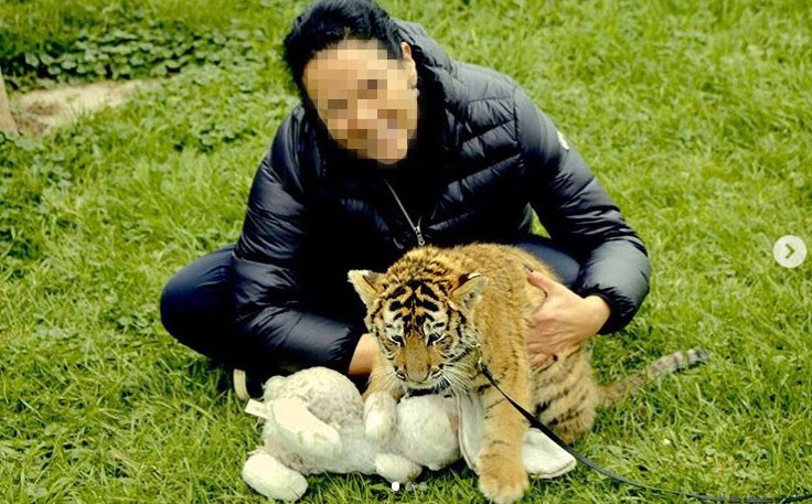 Social media post of a tourist posing with a tiger cub at Jungle Cat World, Canada.