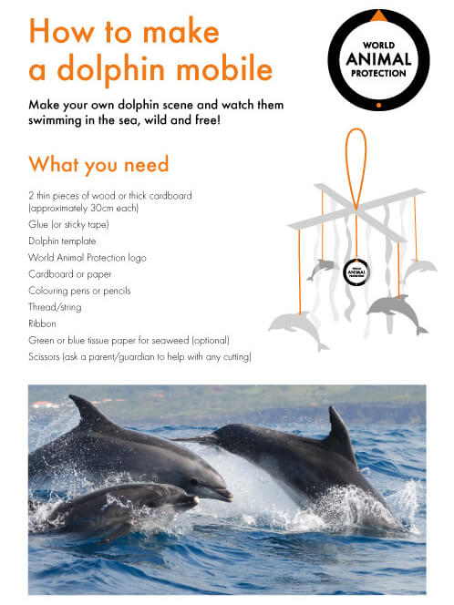 How to make a dolphin mobile craft.