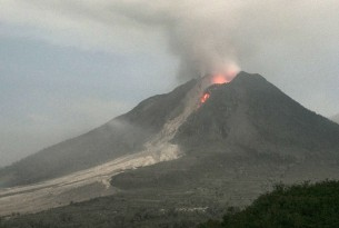 Volcano tremors in Bali: protecting animals after eruptions | World Animal Gifts