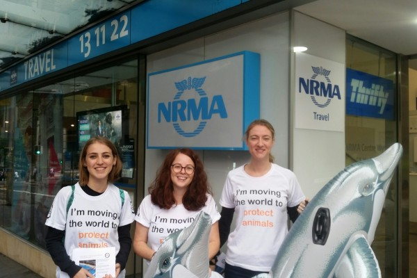 NRMA stops promoting cruelty at Dolphin Marine Magic