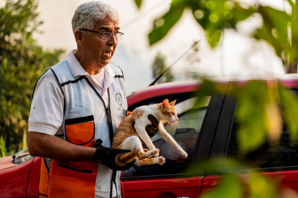 World Animal Protection safety DLO, Fernando Costa, helps residents evacuate their animals from a residential area impacted by the fire.