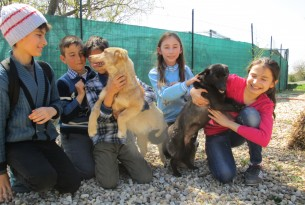Schoolchildren play with dogs at the Save the Dogs shelter in Romania