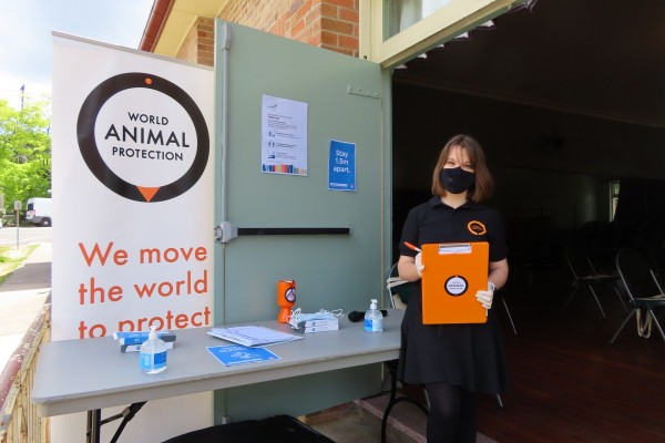 Workshop World Animal Protection in Blue Mountains