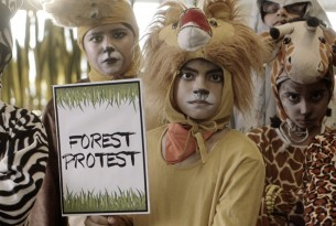 Trophy hunting video by Podar International School