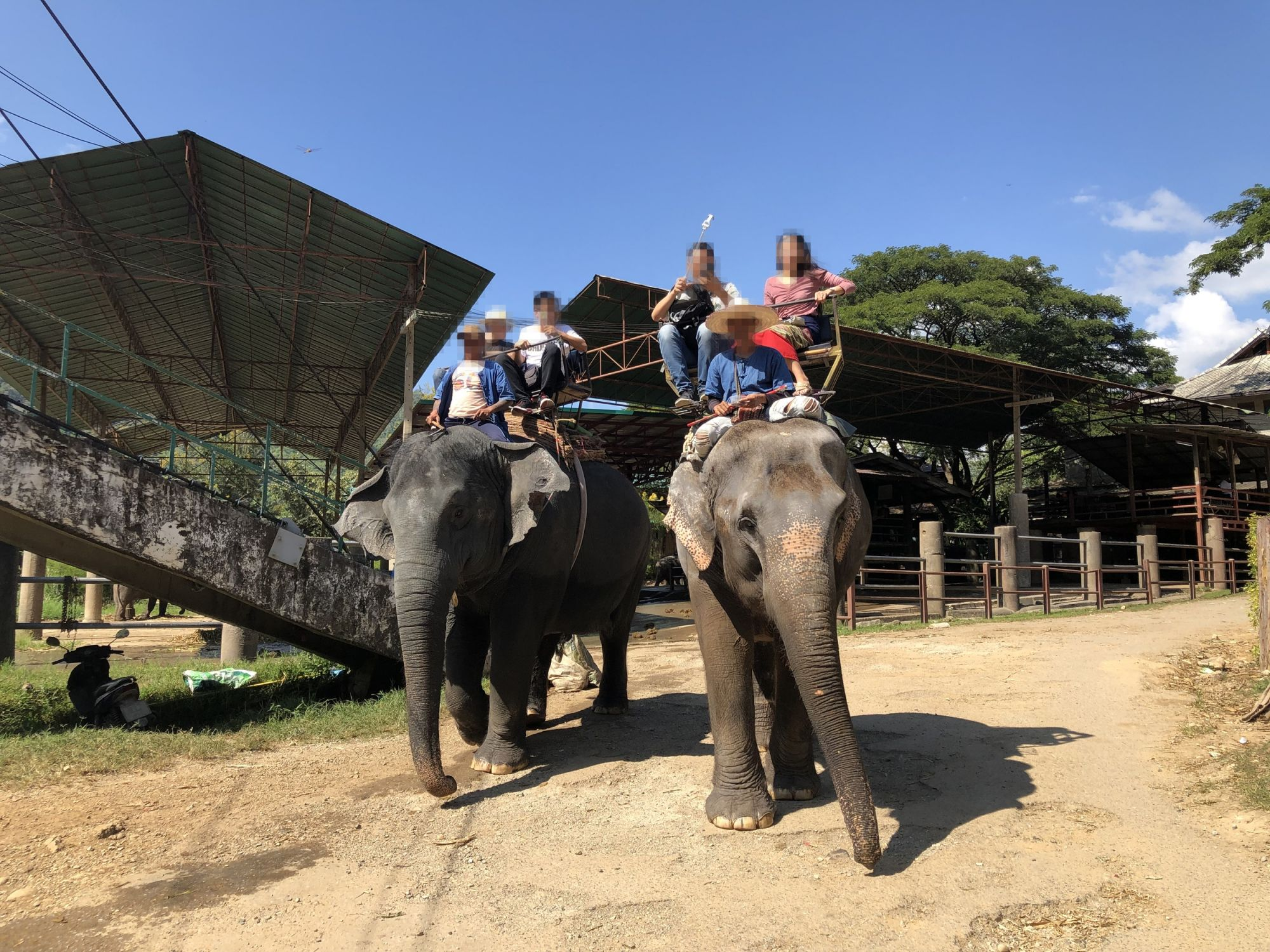 Tourists riding elephants at attraction in Thailand