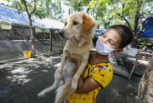 Pictured: On May 12th 2020, World Animal Protection helped more than 300 dogs and provided two tons of food to Wat Hua Koo, a Buddhist temple in Samutprakan Province, Bangkok.