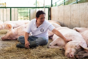 A man petting a pig in a high welfare farm