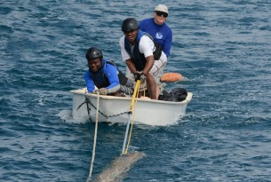 Whale disentanglement training in Tonga