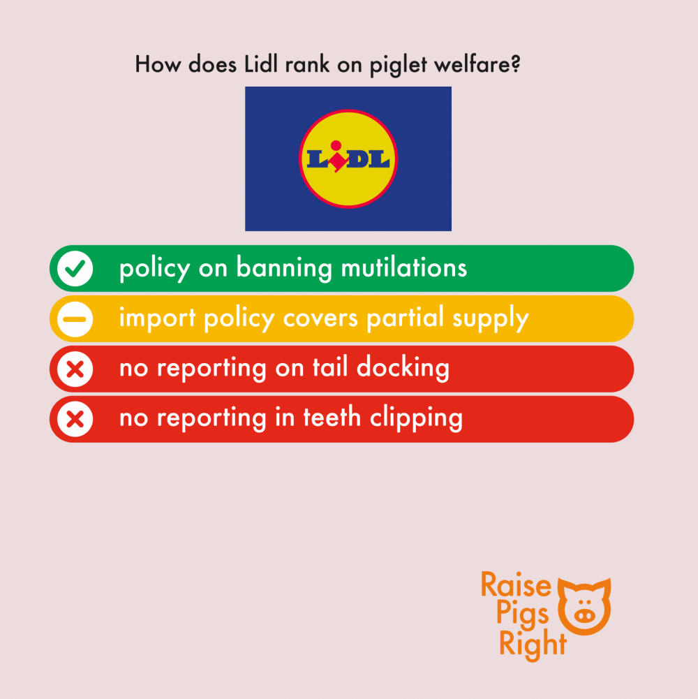 Raise Pigs Right - UK Supermarket Scorecard 2020 (Lidl)