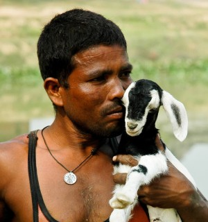 A local man with his goat in India - Animals in disasters - World Animal Protection