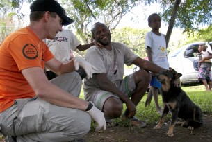 Cyclone Pam: Delivering lifesaving food and protection for up to 30,000 animals