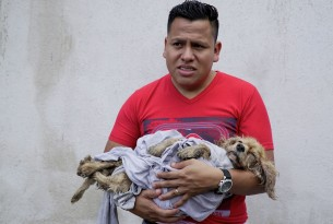 Man cradling dog in Guatemala after the Volcán de Fuego disaster - Animals in disasters