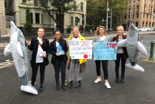 ban dolphin breeding protest