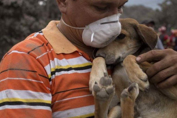 resident_in_guatemala_cradling_his_dog_after_the_colcano_of_fire