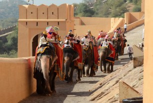 Tourists riding elephants at Amer Fort