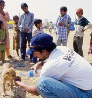 Support World Animal Protection's work in disasters