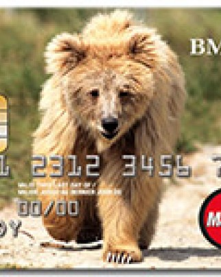Get a BMO World Animal Protection Air Miles MasterCard