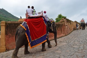 Tourists riding elephant at Amber Fort tourist attraction, India