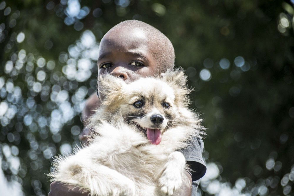 A young boy posing with his dog in Mombasa.