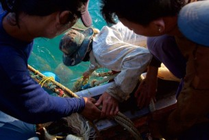 Fishermen collecting netting from the side of a boat