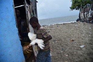 A boy rounds up his chickens into his house in the neighbourhood of Aviation, in Cap-Haitian on 7th September 2017, before the arrival of Hurricane Irma. Credit: Hector Retamal/AFP/Getty Images