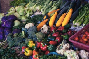 A spread of seasonal winter vegetables