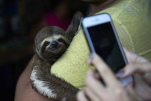 10 Things You Should Know Before You Take a Wildlife Selfie