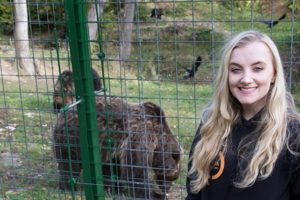 Evanna meeting some of the bears at the sanctuary