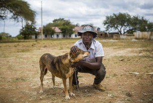 A heavy burden – how rabies affects dogs and people worldwide