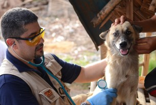 Q&A with Disaster Response Vet: Juan Carlos
